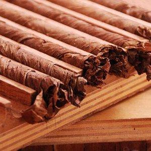 Zigarren-Seminar